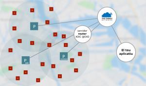Tipologia de xarxa TTN i XOIC