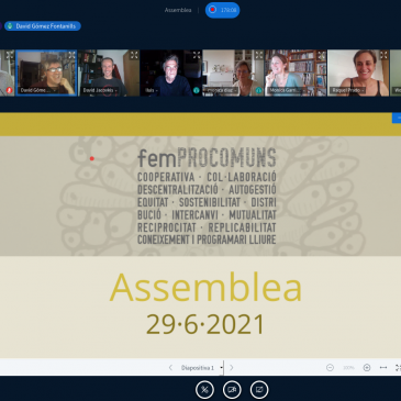 Assemblea General Ordinària de femProcomuns,  Juny 2021